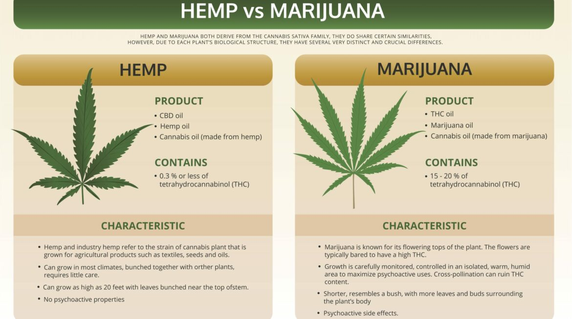 Differences Between Hemp & Marijuana
